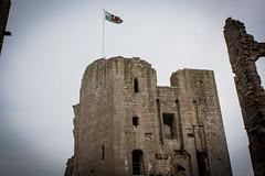"Raglan Castle • <a style=""font-size:0.8em;"" href=""http://www.flickr.com/photos/32236014@N07/8653945304/"" target=""_blank"">View on Flickr</a>"