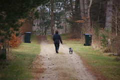 Walking the dog (osto) Tags: denmark europa europe sony zealand dslr scandinavia danmark a300 sjlland  osto alpha300 osto april2013