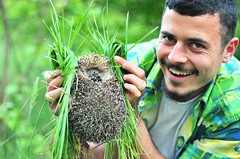 green citizens (.:: Maya ::.) Tags: man male green nature woods human hedgehog