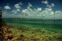 the Gulf (marci.icram) Tags: ocean sea vacation usa sun gulfofmexico water keys spring florida clear shallow islamorada marciicram