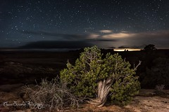 Salt Valley (Chase Schiefer) Tags: park travel lightpainting tourism abbey night stars photography landscapes utah nikon desert natural arches edward glorious national astrophotography canyonlands moab nationalparks juniper d600 landscapephotography Astrometrydotnet:status=failed chaseschieferphotography Astrometrydotnet:id=alpha20130482376687