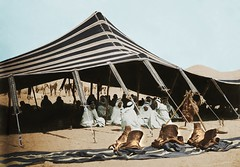 Algeria Riders sit in a tent in 1875 (Benbouzid) Tags: africa sahara algeria desert north maghreb bedouins algrie tente nomade cavaliers 1875 arabes guitoune kheima spahis