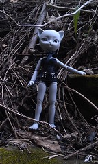 [bjd] desma's riverwalk adventure (obliviousally) Tags: doll bjd abjd freya balljointeddoll balljointdoll hujoo hujoofreya