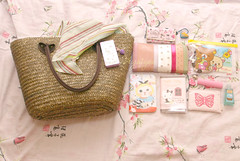 What's in my bag? April 29 (aya1gou) Tags: purse whatsinyourbag whatsinmybag