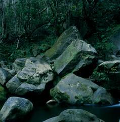 silence (akira ASKR) Tags: longexposure fuji okinawa 沖縄 provia100f hasselblad500cm 長時間露光 nago rdpiii 名護市 轟の滝