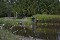 Guests test their netting skills. (BCWF Wetlands Education Program) Tags: bc conservation environmental environment restoration langley wetland arbourday citizenscience bcwf townshipoflangley langleyenvironmentalpartnerssociety wetlandseducationprogram