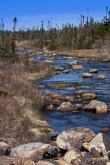 IMG_2403 (andy maclean) Tags: trees irish canada water newfoundland river rocks stream hyperfocal loop filter wilderness distance density neutral gradual