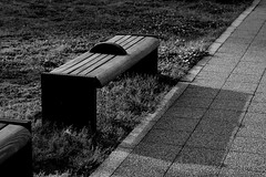 Bench and ShadowMC (megrumeg) Tags: shadow monochrome bench nikon 85mm d600 f18g