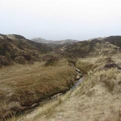 l'eau des dunes02