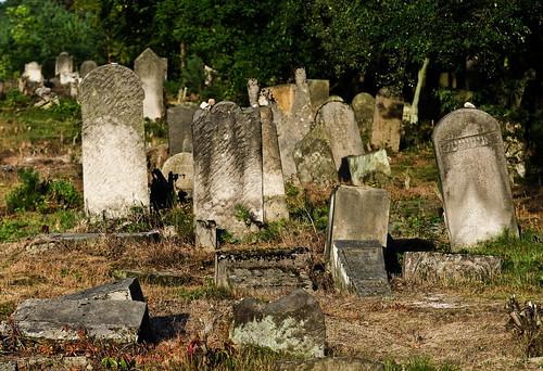 Jewish cemetery in Otwock (Karczew-Anielin)