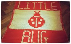 LITTLE BUG BLANKET FOR ZARA'S BABY (dochol) Tags: baby cute wool handmade crochet craft yarn blanket afghan ladybird ladybug hook manta personalised croche