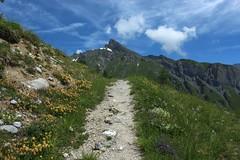 Dpart pour la cabane Rambert (bulbocode909) Tags: ovronnaz valais suisse montagnes nature sentiers prairies nuage paysages vert bleu fleurs
