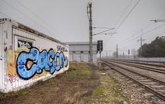 Cason (Herbalizer) Tags: cason graffiti vienna wien austria sterreich wall wand trackside line wiener linie bb