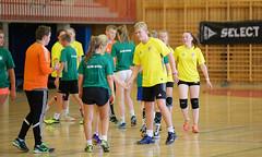 HandballMesterligaP1-10 (Sommereventyret) Tags: merker sommereventyret 2016 periode2 hndball mesterliga