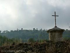La croix, la vigne et l'Oppidum (brigeham34) Tags: rando t septembre dutunneldemalpaspoilhes oppidumdensrune tour arbres vignes calvaire paysage campagne matinbrumeux nissanlesensrune hrault languedocroussillonmidipyrnes france fz45 eu