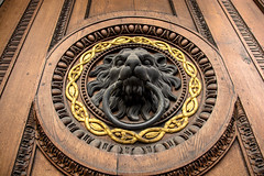 Lion King (A.Dirl) Tags: vienna street city explore