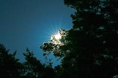 _MG_2984 (hjimmy schlter) Tags: dwirzyno wojewdztwozachodniopomorskie polen pl urlaub polen2016 ffentlich