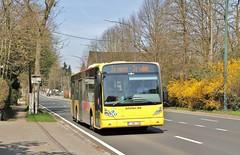 6750 W (brossel 8260) Tags: belgique bus tec brabant wallon