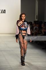 DCS_0061 (davecsmithphoto79) Tags: donaldtrump trump justinbeiber beiber namilia nyfw fashionweek newyork ss17 spring2017 summer2017 fashion runway catwalk