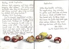 Conkers (Hornbeam Arts) Tags: johnclare september poem chestnut