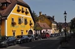 sDSC_0004 (L.Karnas) Tags: wien vienna wiede    viena vienne autumn austria sterreich herbst 2016 weinwandertag wein wander tag wanderung wine wandering neustift am walde