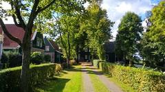 Indian Summer: Westzaan (Peter ( phonepics only) Eijkman) Tags: zaandam zaanstad zaan zaanstreekwaterland waterland nederland netherlands nederlandse noordholland holland