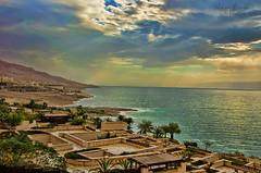 The beauty after a storm (Noor Ziyad) Tags: storm desert resort jordan palmtrees deadsea movenpick noorziyad