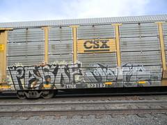 (MARIGOLDZ.) Tags: freights freightgraffiti pasoe jater