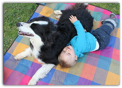 Esteban et Fly (Beauvillage) Tags: family boy people dog chien baby france color art love kids canon de geotagged photography photo europe day photos live mygearandme rememberthatmomentlevel1