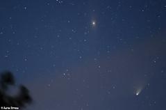 Comet Pan-Starrs & Andromeda Galaxy (ats8110) Tags: night stars nikon michigan andromeda astrophotography comet d300 panstarrs