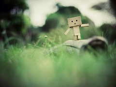 Sometimes it's hard to balance when you have a big square head -_- (veekyliew) Tags: classic 35mm bokeh f14 voigtlander ricoh nokton danbo gxr danboard