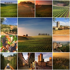My best of Tuscany (Bn) Tags: sunset red summer sun sunlight house holiday tree green colors leaves photo oak fdsflickrtoys topf50 cherries strada italia estate bright wine barrels mosaic great grow visit best hills collection vineyards tuscany chianti vista fields series farms cypress siena roads radda toscane region topf100 plums finest produced vino flourish discover vinyards casale bottling sangiovese cellars dello castellina hillsides harmonious 100faves 50faves sparviero