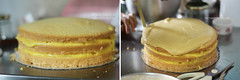 Lemon-Lemon Drop Cake Step 10 (clapanuelos) Tags: cake baking lemon celebration layercake