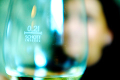 Cheers (donlunzo16) Tags: city color glass bar restaurant town aperture fuji dof wine drink stuttgart lounge fujifilm sutsche x100s cheerssunnysundaytoeverybody