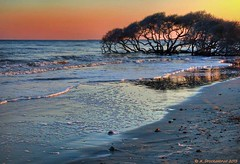 Sunset, Folly Beach County Park, Folly Beach, South Carolina (PhotosToArtByMike) Tags: sunset beach sc southcarolina charleston follybeach atlanticocean lowcountry follybeachcountypark