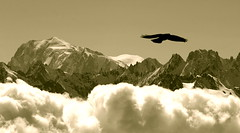 7th sky (clicheforu) Tags: sky bw cloud white mountain snow france alps bird nature montagne alpes canon landscape switzerland high montana europe view suisse altitude nieve flight peak nb ciel alpine cielo neige chamonix wallis height montblanc valais nationalgeographic verbier montfort sommet 4810m hautenendaz 7thsky clicheforu christianpetit