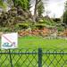 Parc Monceau_3
