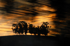 (jc.dazat) Tags: light blur photography photo nikon photographie lumire paysage icm flou photographe