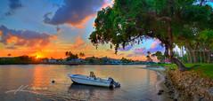 Boat-Docked-at-Intracoastal-Under-Tree-During-Sunset-Florida (Captain Kimo) Tags: sunset tree water marina boat dock florida lifestyle neighborhood highdynamicrange waterway lightroom intracoastal photomatixpro hdrphotography topazsoftware captainkimo