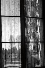 WINDOW VIEW (Sheba53) Tags: trees window reflections panes newport curtains windowpane windowreflection windowpanes newportri windowreflections blackandwhiteimage sheercurtains thebreakersmansion