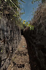 Journey thru Vietnam war time trenches..3 (tommiblom) Tags: military vietnam jungle historical trenches vietnamwar bunkers guntower militaryareanophotography