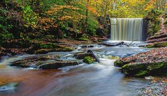 Nant Mill Plas Power Woods in Autumn. (Ade McCabe) Tags: longexposure wales waterfall le weir wrexham nantmill plaspower plaspowerwoods nantmillwoods
