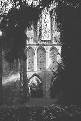Klosterruine Hude (Gret B.) Tags: blackandwhite canon licht ruine schatten dunkel kloster gemäuer hude klosterruine schwarzweis vsco canoneos6d