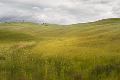 (i-davb) Tags: valdorcia nikond700 landscapephotography green culitvatedfields tuscany nikonafs2470mmf28ged cloudysky toscana manfrottotripods leefilters gndfilters