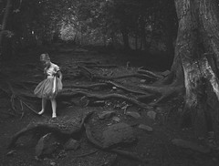 Out of the Darkness (Peggy Skof) Tags: nikond5200 forest wood ballerina ottawa canada path roots trees hike blackwhite