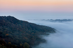 Swaledale Mist (matrobinsonphoto) Tags: landscape outdoors weather uk british great britain north yorkshire mist swaledale dales swale trees woodland wood forest inversion fog cloud valley willance willances leap richmond evening sunset dusk blue hour sunlight glow sky nature
