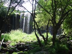 Cascada en la Sierra. (margabel2010) Tags: flora florasilvestre paisajes cascadas cascada presas agua aguadulce aguafluvial piedras ramas guadarrama sierra airelibre blanco blancoyverde