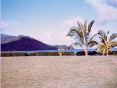 Views of Hanalei Bay - c1983 (1) (kimstrezz) Tags: 1983 familytriptohawaiic1983 hanaleibay kauai