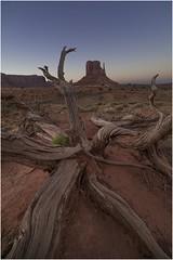 Monument Valley  v010 (Ezcurdia) Tags: monumentvalley utah arizona usa eeuu navajo tsebiindisgaii limolita navajotrivalpark johnfordpoint