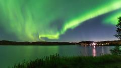Aurora borealis (JH') Tags: nikon nikond5300 nature d5300 summer sky sigma sweden 2016 1020 heaven stars auroraborealis aurora borealis landscape exposure trees tree water northernlights